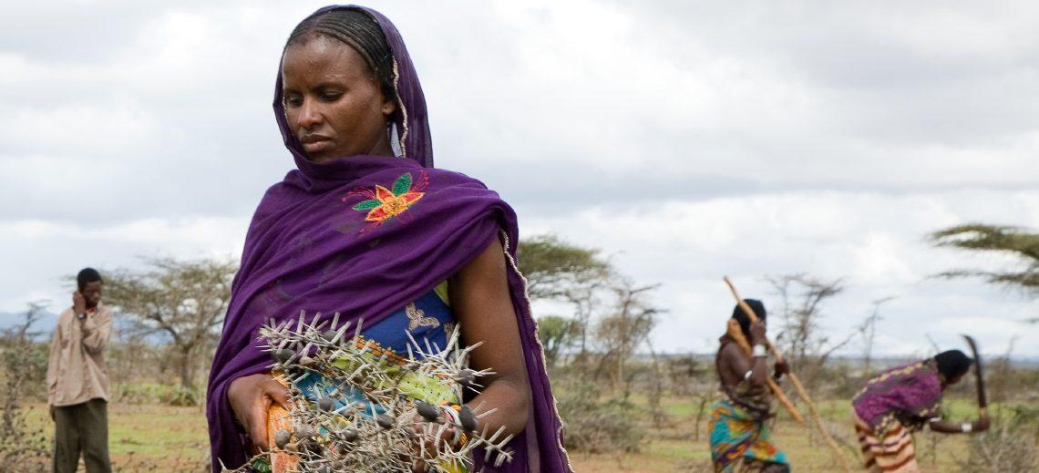 L'EPER en Ethiopie